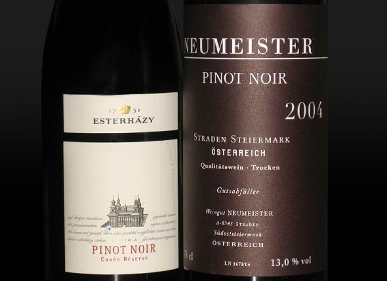 2009 pinotnoir 01