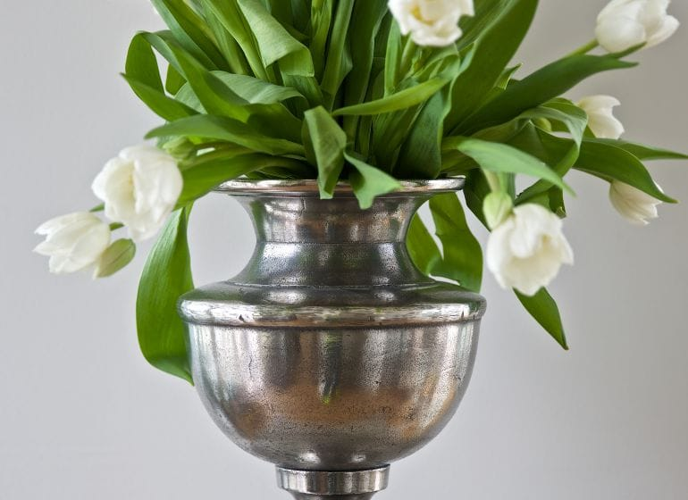 2014 tulips